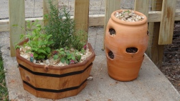 Container kitchen garden and strawberries