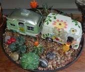 Cactus, succulants fairy garden