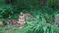 Buddha on limestone outcrop with daylilies